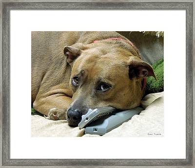 Do Not Come Near The Remotes Framed Print by Renee Trenholm
