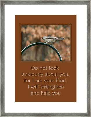 Do Not Look Anxiously About You Framed Print by Denise Beverly