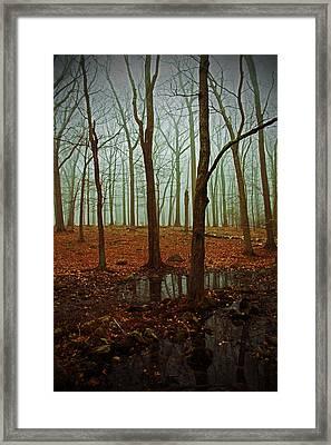 Do We Dare Go Into The Woods Framed Print by Karol Livote