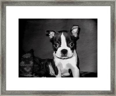 Do You Love Me Framed Print