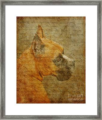 Do You Remember Me? Framed Print by Judy Wood