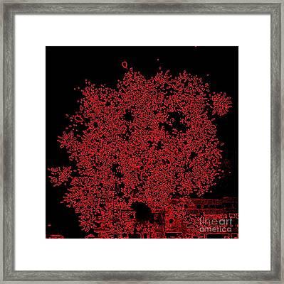 Do You See Me Framed Print by Shelia Kempf