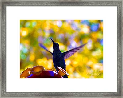Do You See What I See? Framed Print by Al Bourassa