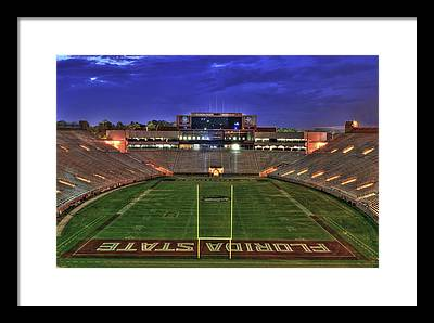 Florida State Framed Prints