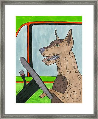 Doberman Driving Framed Print
