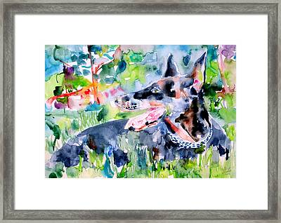 Doberman - Watercolor Portrait Framed Print by Fabrizio Cassetta