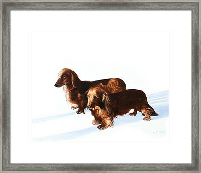 Doc And Chili Framed Print by Kevin Hill
