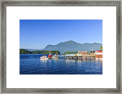 Dock In Tofino Framed Print by Elena Elisseeva