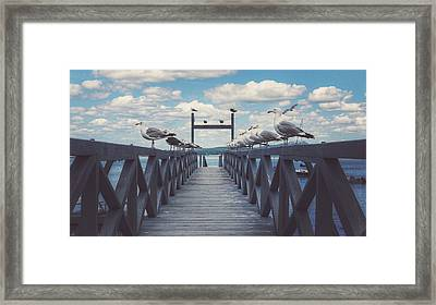 Dock Of The Bay Framed Print by Kenny  Noddin