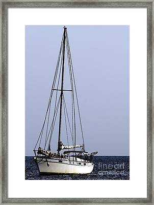 Framed Print featuring the photograph Docked At Bay by Lilliana Mendez
