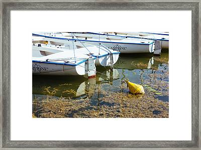 Docked Sailboats Framed Print by Pati Photography
