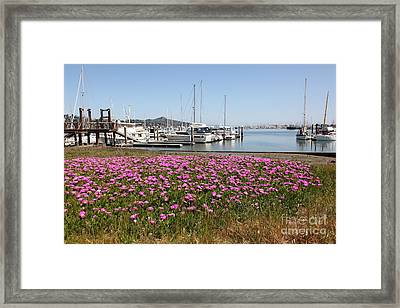 Docks At Sausalito California 5d22695 Framed Print by Wingsdomain Art and Photography