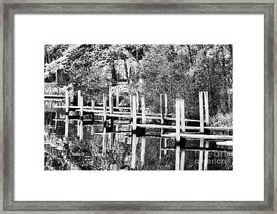 Docks Lined Up Framed Print