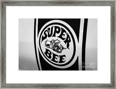 Dodge Super Bee Decal Black And White Picture Framed Print