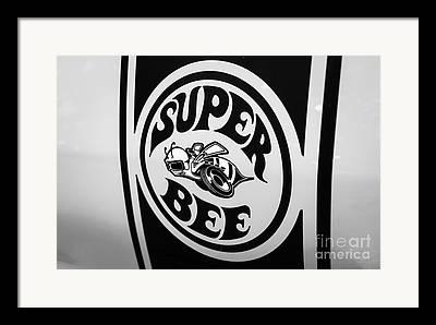 Superbee Framed Prints