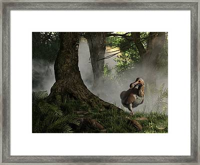 Dodo Bird Framed Print by Daniel Eskridge