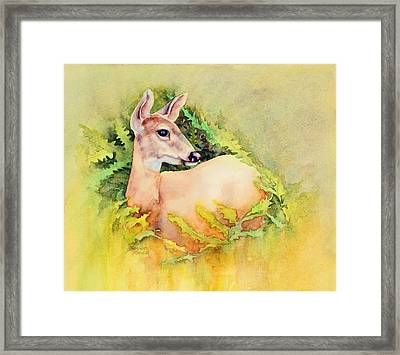 Doe In Ferns Framed Print