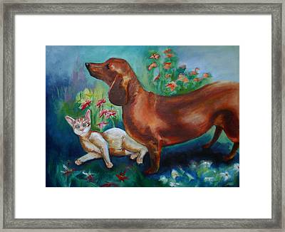 Dog And Cat In The Garden Framed Print