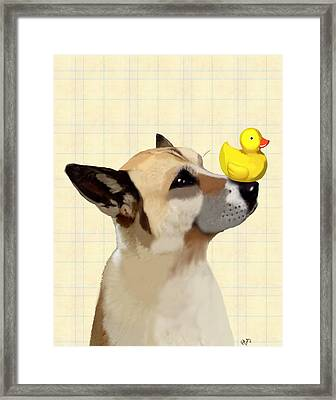 Dog And Duck Framed Print by Kelly McLaughlan