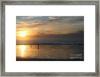 Dog And Man On The Beach Framed Print by Ian Donley