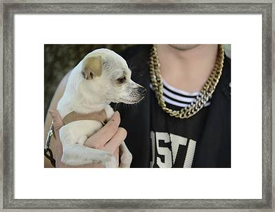 Dog And True Friendship 1 Framed Print