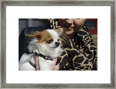 Dog And True Friendship 2 Framed Print