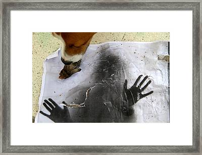 Dog Art Framed Print