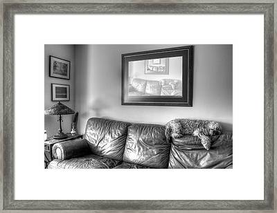 Dog As Art Framed Print by JC Findley