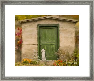 Dog At The Door Framed Print
