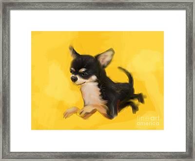 Dog Chihuahua Yellow Splash Framed Print by Go Van Kampen
