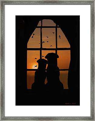 Dog Couple In Window Framed Print