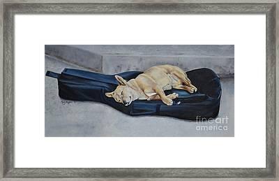Dog Day Afternoon Framed Print