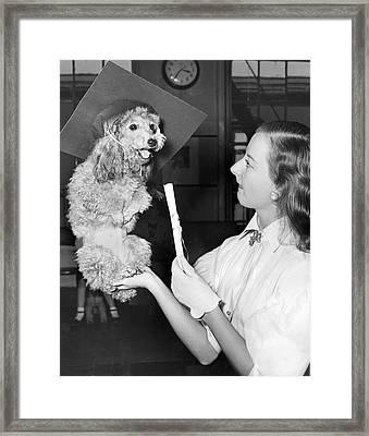 Dog Graduates From School Framed Print