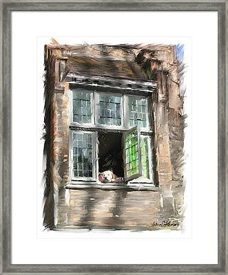 Dog In Window- Bruges Framed Print