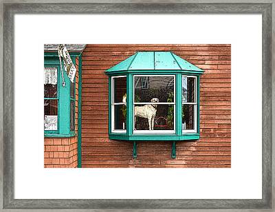 Dog In Window Framed Print