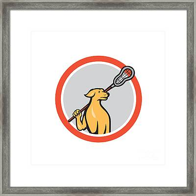 Dog Lacrosse Player Crosse Stick Cartoon Circle Framed Print by Aloysius Patrimonio