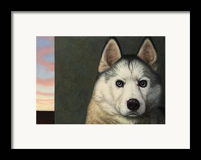 Siberian Husky Framed Prints