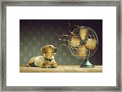 Dog Next To Electric Fan Framed Print by Ktsdesign