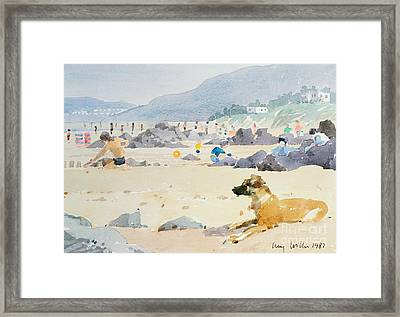 Dog On The Beach Woolacombe Framed Print by Lucy Willis