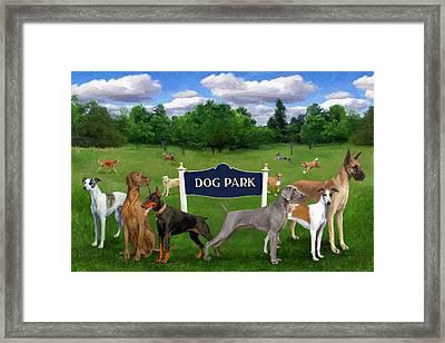 Dog Park Framed Print