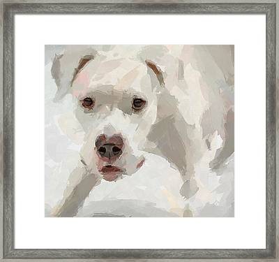 Dog Question Framed Print