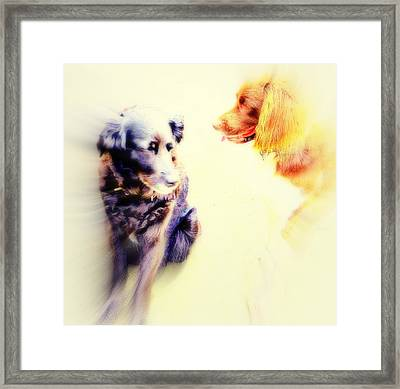 If You Are Dreaming Of A Dog Romance Dream Again  Framed Print by Hilde Widerberg