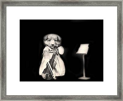 Dog Serenade Framed Print