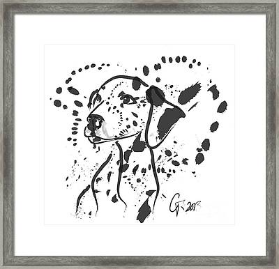 Dog Spot Framed Print by Go Van Kampen