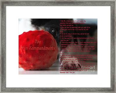 Dog Ten Commandments Framed Print