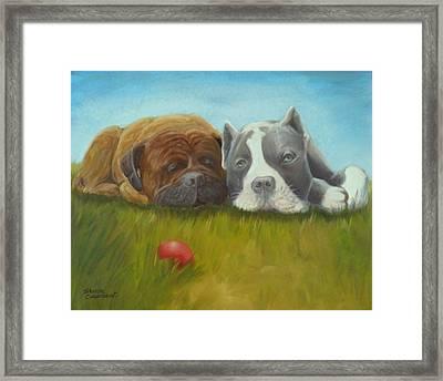 Dog Tired Framed Print by Sharon Casavant