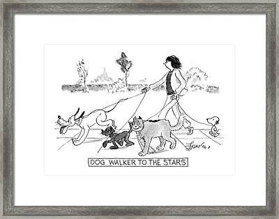 Dog Walker To The Stars Framed Print by Edward Frascino