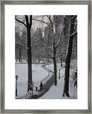 Dog Walking In A Snowy Central Park Framed Print