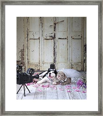 Dog Wedding Framed Print
