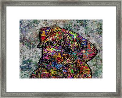 Dog With Color Framed Print